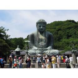 Pocztówka Budda z Kamakury