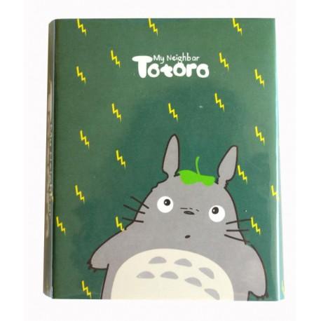 4-częściowy zestaw notesów z Totoro zielony
