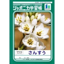 Zeszyt do nauki pisania kanji 12 mm B5 czytanka